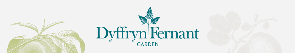 Dyffryn Fernant Garden Logo